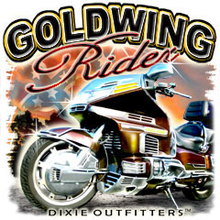 6399L GOLDWING RIDER